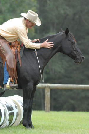 Pat Parelli shares insights on horse behavior